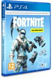 Подробнее о FORTNITE: DEEP FREEZE BUNDLE
