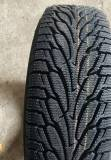 Подробнее о Estrada Winterri WE 195/65 R15 91T