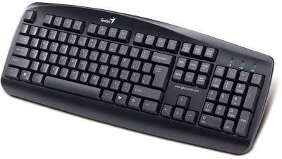 Клавиатура Genius KB-110X Black PS/2 31300711107