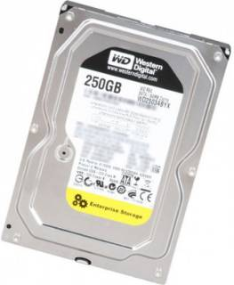 Внутренний HDD/SSD Western Digital Caviar RE4 WD2503ABYX