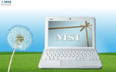Ноутбук MSI Wind U100 SpecialEdition Heart U100-020UA-IW