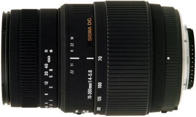Объектив Sigma 70-300 mm f4-5,6 DG Macro for Nikon 5A9955