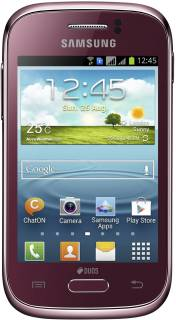 Смартфон Samsung S6312 Galaxy Young Duos Wine red GT-S6312WRA