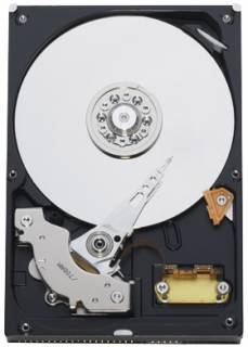 Внутренний HDD/SSD Western Digital WD800JB
