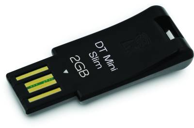 Флеш-память USB Kingston DataTraveler Mini Slim DTMS/2GB