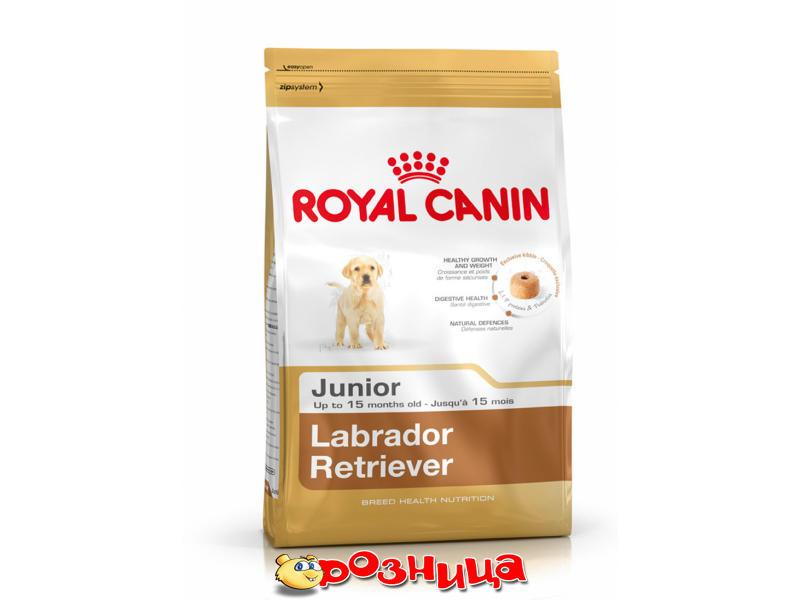 royal canin labrador junior 2491120 12. Black Bedroom Furniture Sets. Home Design Ideas